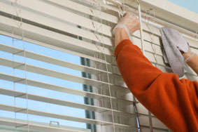 Cleaning office blinds